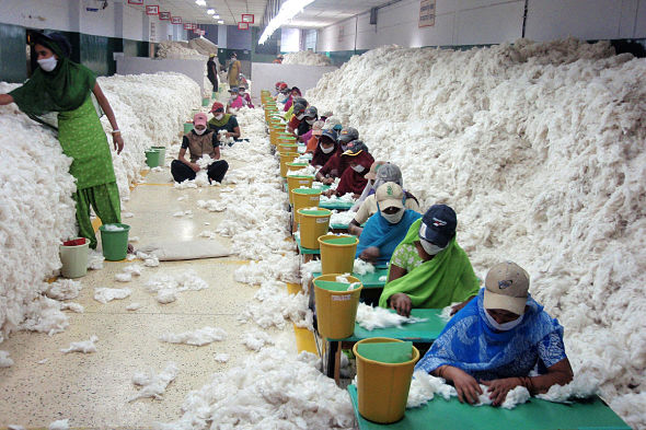 31.07.15-Manually-decontaminating-cotton-at-Indian-spinning-mil-590x393.jpg