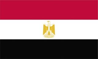 egypt%20flag_opt.jpeg