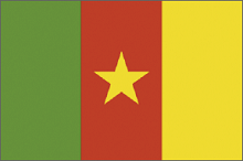 cameroon-flag-220.png