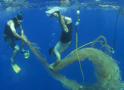 Photo: Algalita Marine Research Foundation