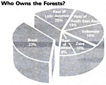 Who owns the forests?