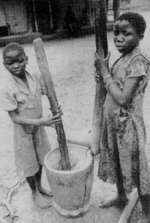 Cereal story: pounding corn to make nshima (porridge).