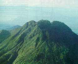 Sacred slopes of Mount Apo tapped for boiling water.