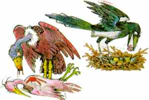 Illustration by PETER FIRMIN