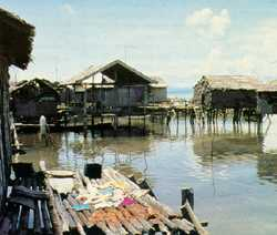 The Sama Bajo spend most of their lives at sea but have set up small villages built on stilts like Bonta-Bonta.
