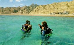 Off Egypt's Sinai peninsula. Tourists can even do harm under water.