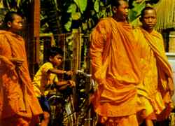 Peace and prayer: Cambodian monks.