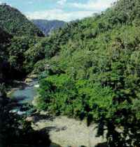 Oil prospect: the Tambopata Valley under threat.