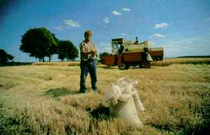 German farmer, flanked by a massive harvester, takes stock of his winter barley crop. Energy-intensive industrial farming hides the real costs of food production.