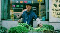 Selling vegetables - but the Chinese people need to buy CFC-free refrigerators