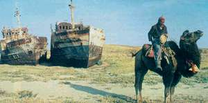 Back on dry land: camels replace cruise-ships in Central Asia