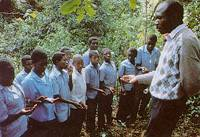 Cameroon's lesson - aid does not protect rainforest.
