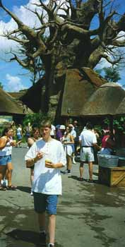 Cooling off in Harambe village with one of Disney's hand-crafted baobabs behind.