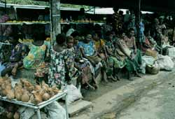 Not much like the IMF - cash or shells have equal value in Rabaul's market.
