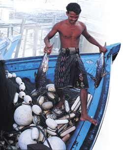 One false step - Malaysian fishing livelihoods are threatened.