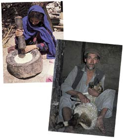 Halima pounding grain and Hamid sheep-shearing: a traditional subsistence life under threat.