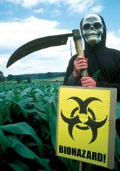Reap what you sow: the GriM Reaper joins protests against GM crops in Britain.