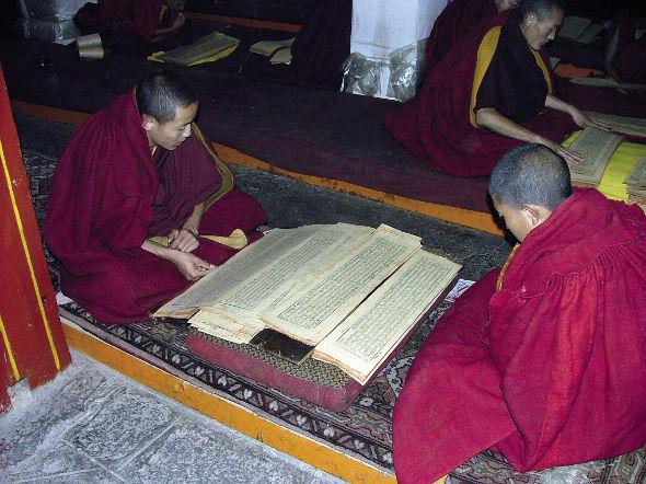 01-05-2017-tibetan-590.jpeg