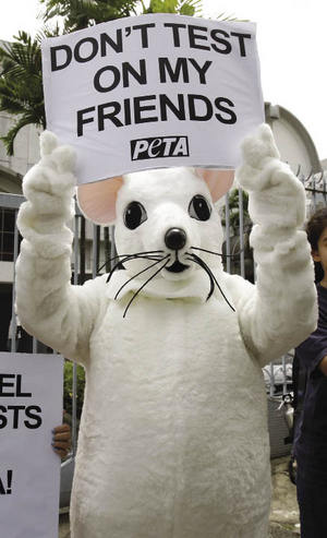 Do you feel that it is right to use animals for human research?