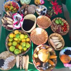 Peasants feed world: examples of the rich variety of foods produced by peasant farming.
