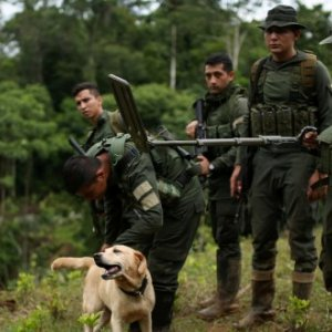 Colombian anti-drug policemen and a dog stand guard at a coca plantation in Tumaco, Colombia February 26, 2020. Picture taken February 26, 2020. REUTERS/Luisa Gonzalez