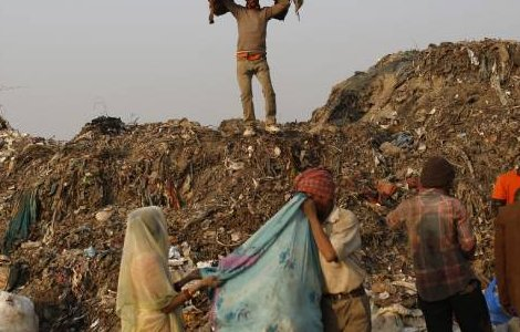 Rag pickers collect recyclable material at a garbage dump in New Delhi November 19, 2014. REUTERS/Ahmad Masood