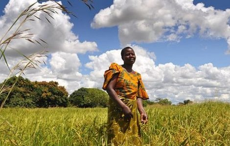 A small-scale farm worker pictured in Tanzania.  (Alun McDonald/Oxfam)