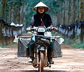 Vietnam is a Southeast Asian country on the South China Sea known for its beaches, rivers, Buddhist pagodas and bustling cities. Hanoi, the capital, pays homage to the nation's iconic Communist-era leader, Ho Chi Minh, via a huge marble mausoleum. Ho Chi Minh City (formerly Saigon) has French colonial landmarks, plus Vietnamese War history museums and the Củ Chi tunnels, used by Viet Cong soldiers