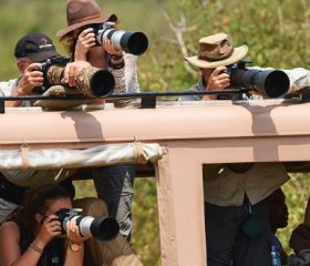 Tourists and photographers zoom in on wildlife at the Mara river during the great wildebeest migration, Maasai Mara National Reserve, Kenya. ERIC BACCEGA/ALAMY