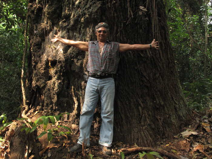 José Claudio Ribeiro da Silva, one of the many environmentalists who died in recent years