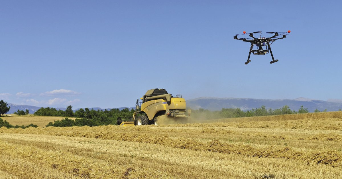 Aerial drone and combine harvester in a version of the new pastoral in a French wheat field. agriculture robots