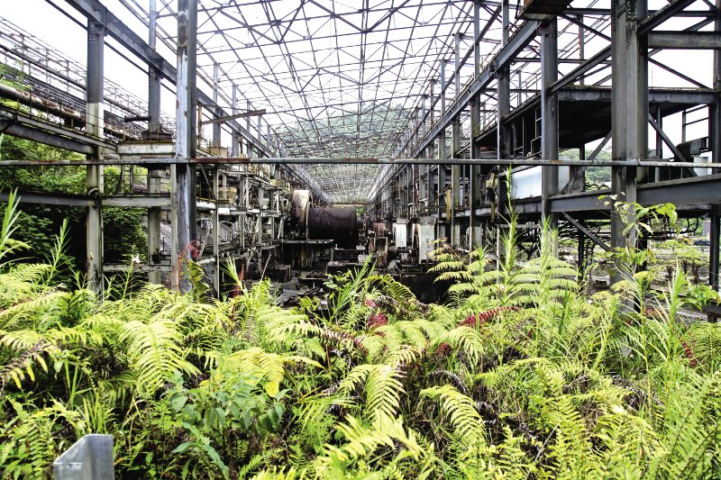 Nature fights back: the jungle returns to an abandoned ore-sorting factory at Panguna, Bouganville.