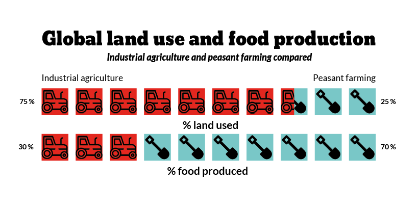 Global land use and food production: industrial agriculture and peasant farming compared