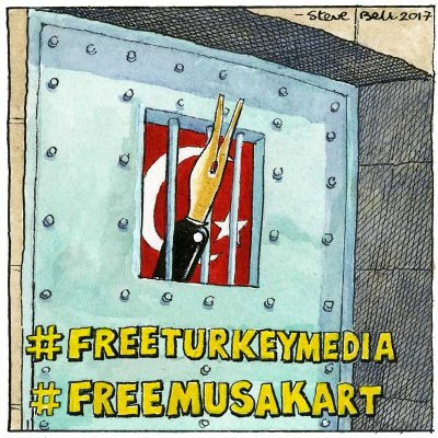 #FreeTurkeyMedia: A number of cartoonists have penned pictures in support of the campaign.
